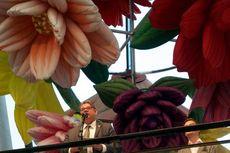 Timo Soini, Isu Rasial, dan Dilema di Bawah Partai Finlandia Sejati