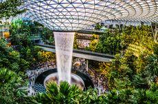 IATA Travel Pass Bisa Dipakai ke Singapura Mulai 1 Mei 2021