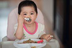 Cegah Stunting, Protein Hewani Harus Ada dalam MPASI