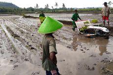 Berkat Alsintan, Petani Bisa Nikmati Transformasi Pertanian Modern