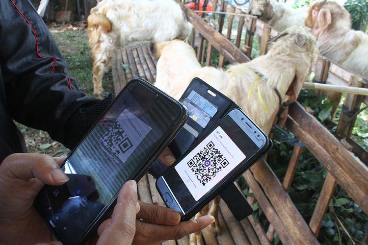 Penjual hewan kurban memperlihatkan sistem pembayaran daring dengan kode Quick Respons (QR) yang diterapkan di lapak hewan kurban miliknya di Sawojajar, Malang, Jawa Timur, Sabtu (25/7/2020). Selain menerapkan pembayaran secara daring, penjual hewan kurban setempat juga memasarkan jualannya di pasar digital dan jejaring sosial guna mencegah penyebaran Covid-19.