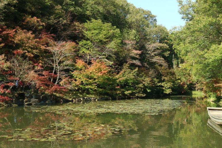 Taman di Shinshoji Zen di wilayah Fukuyama, Hiroshima, Jepang.