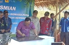 Pertama di Indonesia, Bambu Diolah Jadi Energi Listrik untuk Terangi 3 Desa