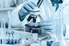 Misteri Virus Perusak Paru-paru asal China, Perlukah Kita Khawatir?