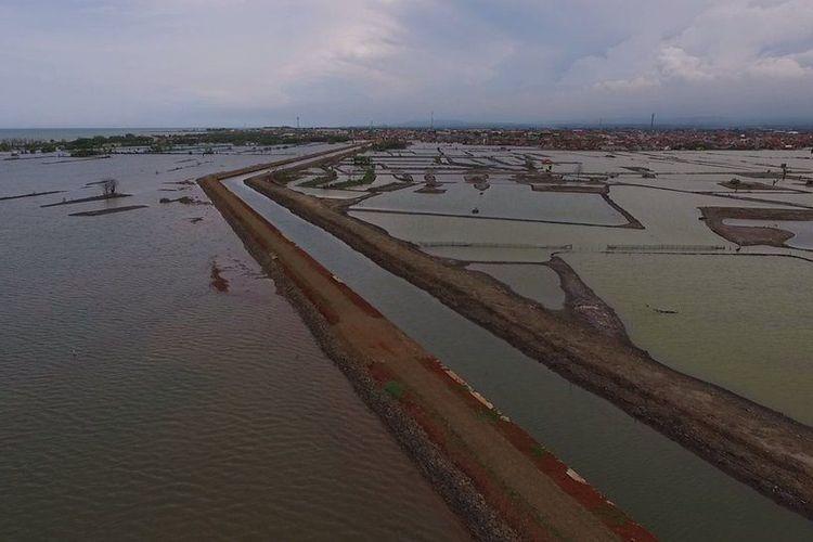 Tanggul yang dibangun di Pekalongan untuk membentengi 22.000 KK warga yang terancam terdampak tenggelam