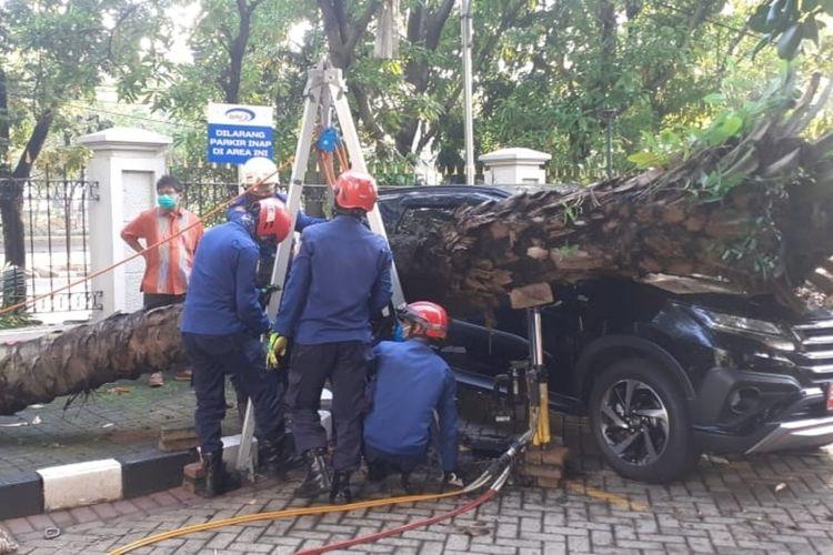 Sebuah mobil tertimpa pohon kelapa sawit yang tumbang di halaman kantor BPKP, Matraman, Jakarta Timur, Rabu (29/4/2020).