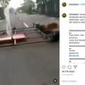 Viral, Video Vespa Modif Brutal yang Lebarnya Sebadan Jalan