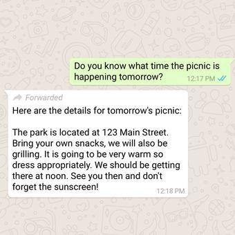 Label forwarded untuk pesan yang diteruskan dari pengguna lain di WhatsApp.
