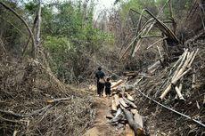 Hutan Larangan, Kampung Adat Cireundeu, dan Ancaman Pembangunan