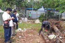 Komisi Pengarah Cek Dugaan Kerusakan Pohon akibat Revitalisasi Monas