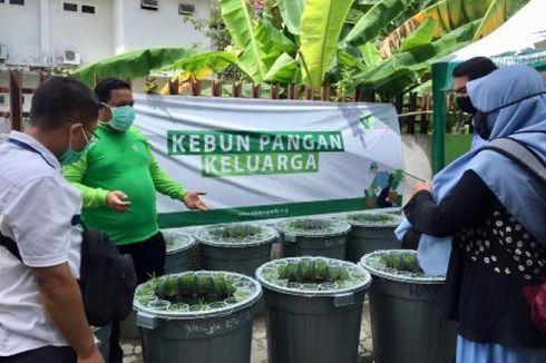 Dompet Dhuafa Kerja Sama dengan Pemprov Gorontalo untuk Program Kebun Pangan Keluarga