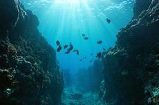 4 Zona Kedalaman Laut Beserta Penjelasannya