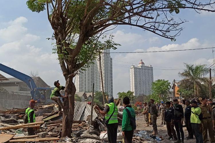 penebangan pohon kering untuk menanam tabebuya di lokasi penggusuran Jalan Agung Perkasa VIII, Sunter Agung, Jakarta Utara