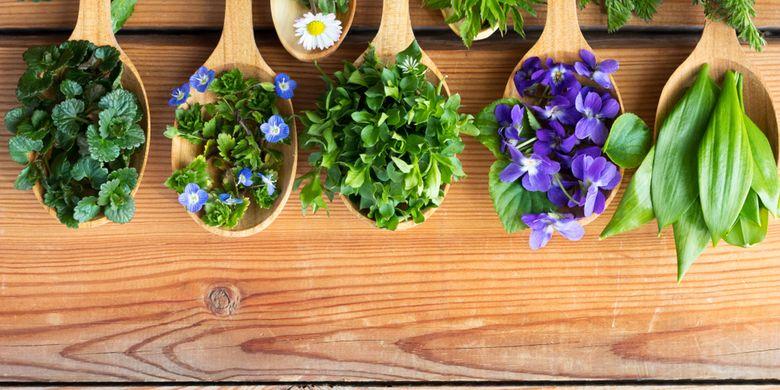16 Jenis Edible Flower Di Indonesia Bunga Yang Bisa Dimakan Halaman All Kompas Com