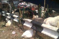 Pedagang di Jakarta Timur Masih Gunakan Trotoar untuk Dagang Hewan Kurban