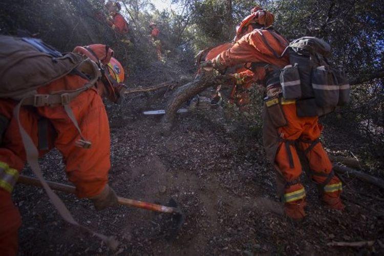 Tahanan menjadi bagian dari regu pemadam kebakaran di bawah otoritas Departemen Pemadam Kebakaran California. Dalam foto ini, mereka menaiki lereng bukit yang curam. Foto diambil pada 28 September 2017 di dekat Yucaipa, California, Amerika Serikat. (AFP/David McNew)