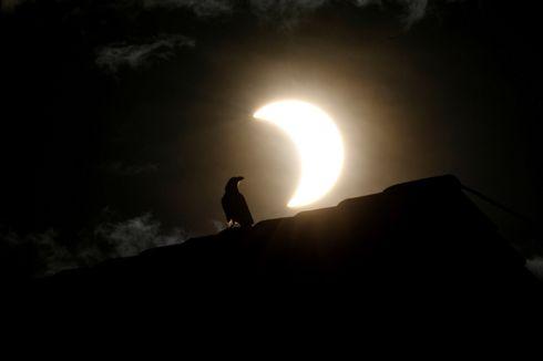 Gerhana Matahari Cincin 21 Juni, Begini Penampakannya di Negara-negara Lain