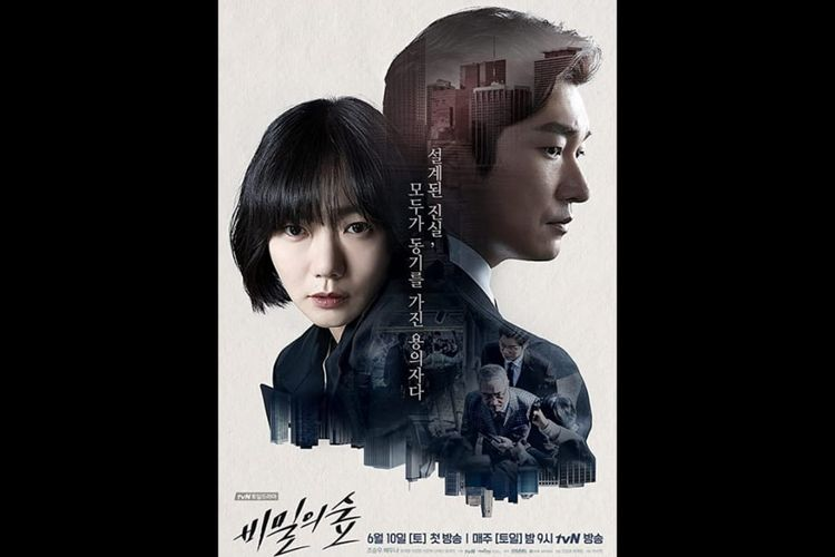 Poster Drama Korea Stranger (Forest of Secret)