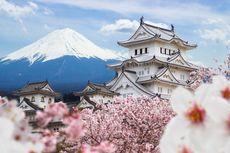 9 Tempat Bunga Mekar di Musim Semi, Ada yang Sediakan Siaran Langsung