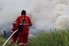 Cerita Tim Manggala Agni Bertemu Ular Kobra saat Pemadaman Karhutla di Riau