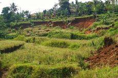 Persawahan Ambles di Nyalindung Sukabumi, Tanahnya Masih Bergerak Secara Perlahan