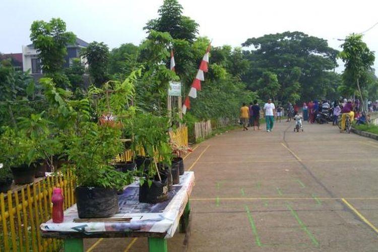 Urban Farming di bantaran Kali Pesanggrahan di Kelurahan Ulujami.