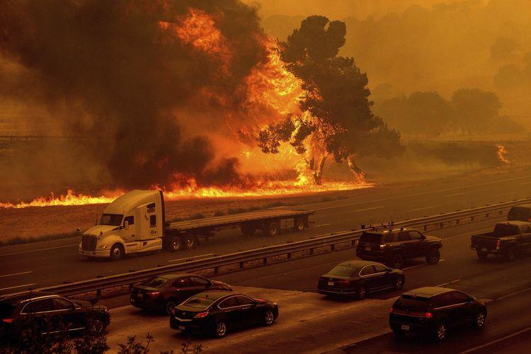 Api dari kebakaran hutan akibat sambaran petir di California, Amerika Serikat (AS), menjalar sampai ke dekat jalan tol. Jalan itu langsung ditutup total tak lama setelahnya, pada Rabu (19/8/2020).