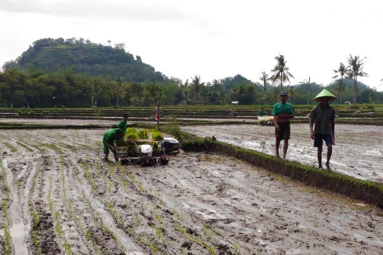 Mahasiswa Sekolah Tinggi Penyuluhan Pertanian (STPP) Malang tengah mencoba alat untuk menanam padi di areal persawahan yang berada di Desa Mayang, Kecamatan Mayang, Kabupaten Jember, Rabu (23/5/2018)