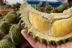 Australia Memasuki Musim Durian: Baunya Sudah Tercium