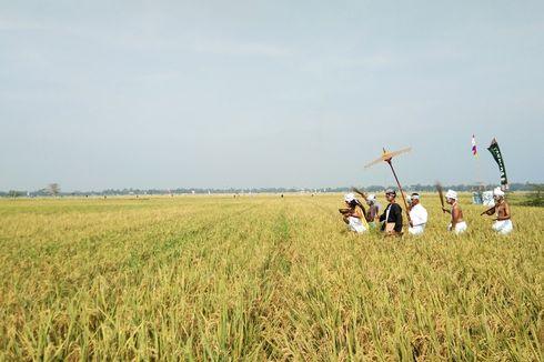 Indonesia sebagai Negara Agraris, Apa Artinya?