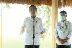 Jokowi: Jika Food Estate Dikerjakan dengan Baik, Kita Bisa Bangun Ketahanan Pangan