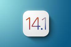 iOS 14.1 Meluncur, Ini Daftar