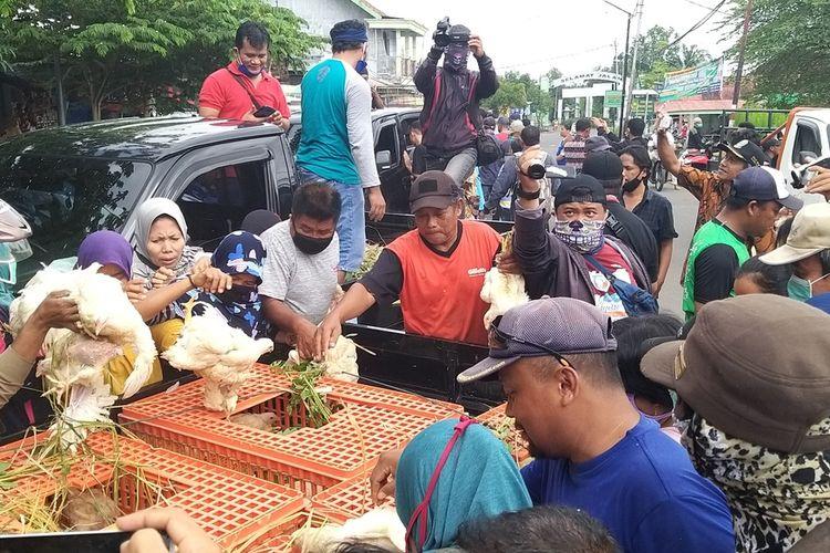 Nampak warga berebut mengambil ayam gratis yang dibagikan peternak ayam di Kabupaten Madiun. Peternak ayam membagikan ribuan ayam hidup menyusul anjloknya harga ayam hidup ditengah pandemi covid-19 di Pasar Dungus, Kamis (16/4/2020).