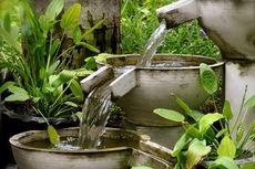 5 Cara Membasmi Nyamuk dari Kolam Air Mancur