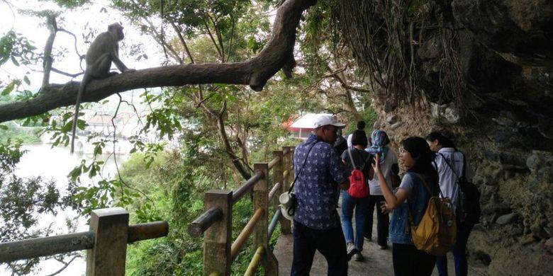 Pengunjung Gua Kreo Semarang tampak antusias dengan kehadiran kera-kera di sekitar tempat wisata, Rabu (03/05/2017).