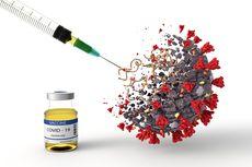 Vaksin Covid-19, Apakah Sudah Sesuai Virus Corona di Indonesia?