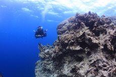 7 Rekomendasi Tempat Wisata Kolaka: Pulau Padamarang hingga Danau Biru