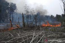 Lahan Taman Nasional Danau Sentarum yang Terbakar Capai 138,16 Hektar