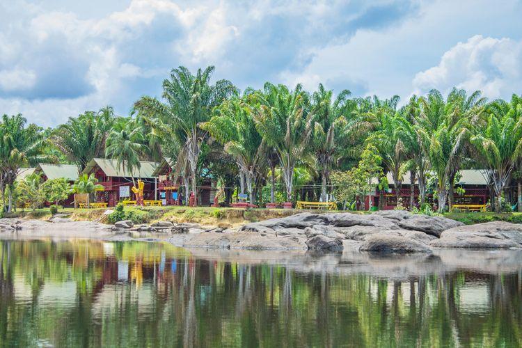 Pemandangan kabin lucu dan lanskap hutan hujan tropis yang indah serta jeram di sepanjang sungai Suriname dekat Miami, Django, Upper Suriname.