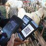 Imbauan Pemerintah Terkait Pemotongan Hewan Kurban Saat Idul Adha