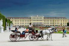 Beasiswa Summer School sambil Menikmati Wisata Vienna, Ini Infonya...