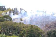 Hutan Lindung Seluas Hampir 20 Hektar di Aceh Tengah Terbakar