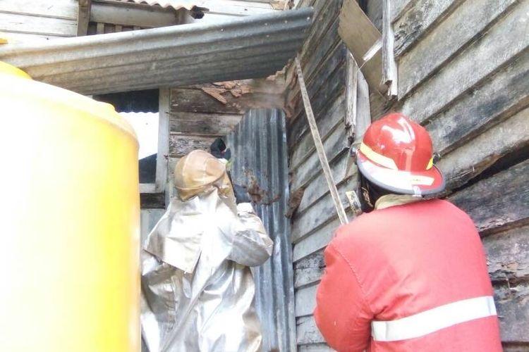 Anggota pemadam kebakaran Kabupaten Nunukan terpaksa menggunakan perlengkapan baju anti api untuk memindahkan sarang tawon hutan yang meresahkan warga. Sudah puluhan warga yang mengalami kecelakaan saat mengendarai motor dan disengat tawon.