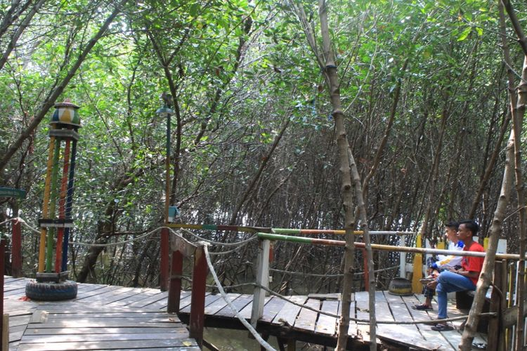 Sejumlah wisatawan saat berkunjung ke wisata hutan mangrove Desa Ketah Kecamatan Suboh Kabupaten Situbondo