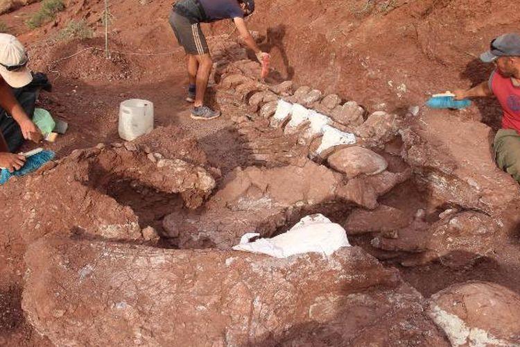 Paleontolog menemukan sisa-sisa fosil berusia 98 juta tahun di Provinsi Neuquen di Patagonia barat laut Argentina.