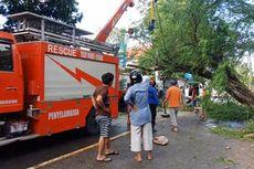 Pulang Padamkan Kebakaran, Mobil Damkar Tabrak Pohon, 1 Tewas dan 4 Kritis