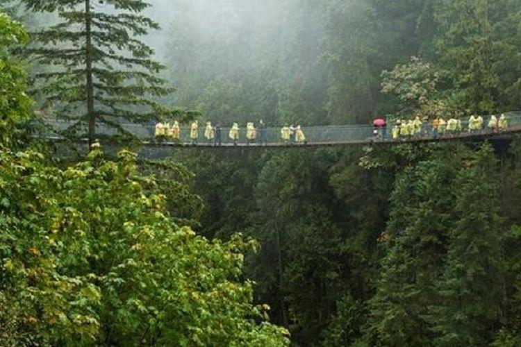 Jembatan Capilano Suspension dibangun setinggi 230 dari dasar Sungai Capilano yang berkelok-kelok. Sementera panjang jembatan ini membentang 450 kaki membelah hutan cemara di Canadian Rockies.