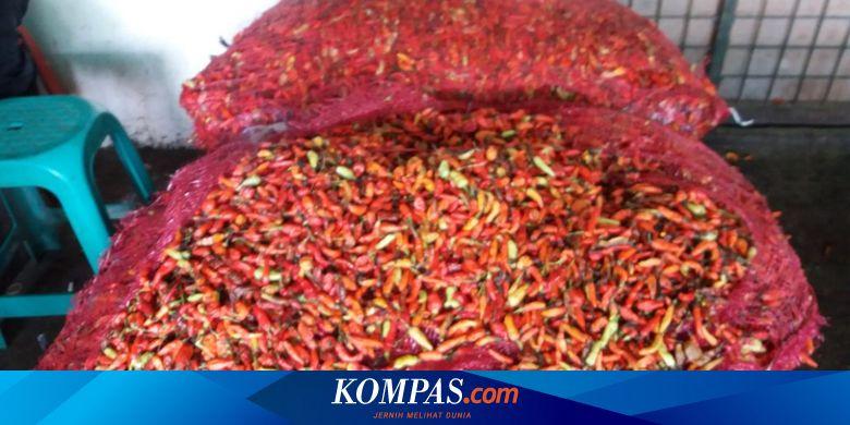 Cabai Rawit Merah Capai Rp 90 000 Per Kg Berapa Harga Di Petani Halaman All Kompas Com