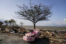 Peneliti Sebut Gempa Bumi Tsunami Mentawai 2010 adalah Kejadian Langka