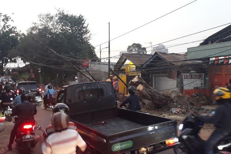 Pohon tumbang di Jalan Komodor Halim Perdana Kusuma, Makasar, Jakarta Timur, membuat arus lalu lintas padat merayap, Kamis (24/10/2019).